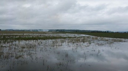 Flooded crop land. Photo credit: nrcs.usda.gov