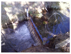 Temporary Weir In Ditch
